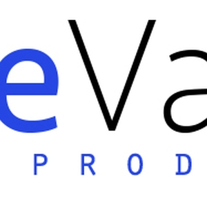 BlueVault Aerial Productions