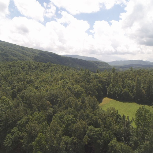 smokey mountains in Del Rio, Tennessee  (east Tennessee)