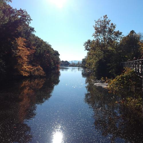 It was a beautiful fall