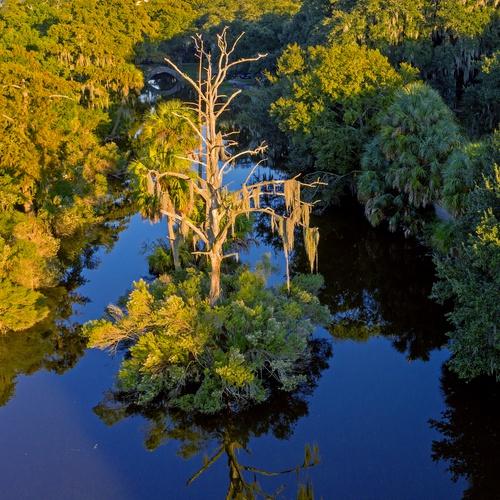 New Orleans City Park Lagoon