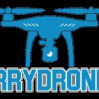 Arry Drones