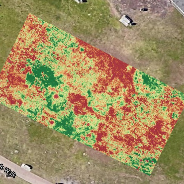 Vegetation_Map_Example_2_NDVI