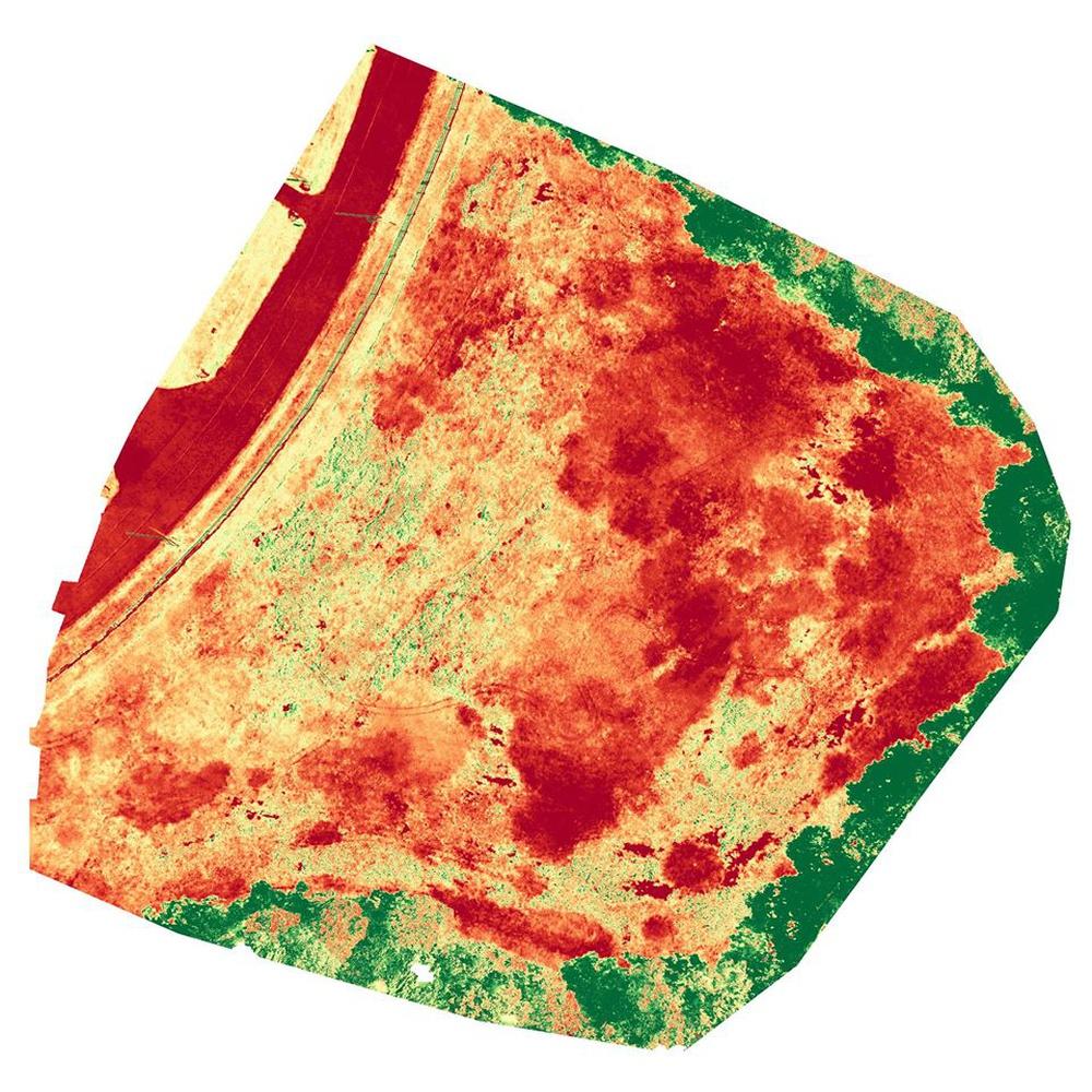 Crop Health Analysis - Via Drone Deploy
