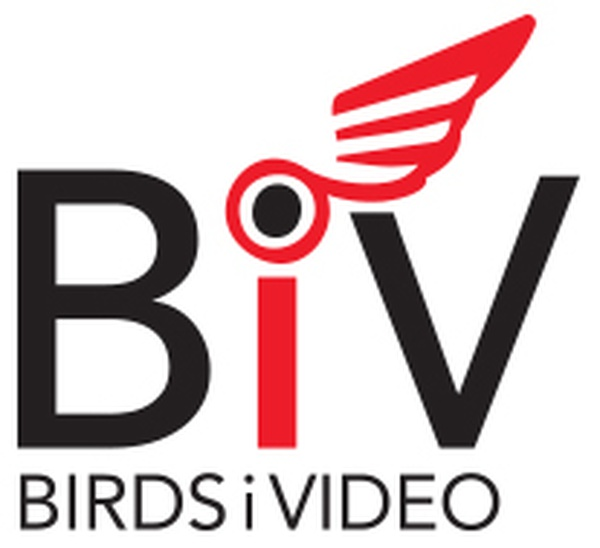 BirdsiVideo of Wisconsin