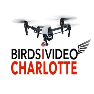 BIRDSiVIDEO Charlotte