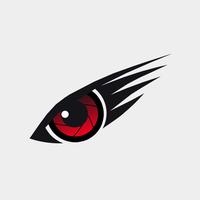 Mission Hawk Aerial Imaging LLC