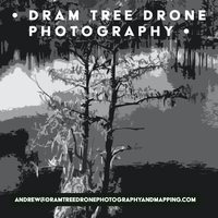 Dram Tree Drone Photography & Mapping