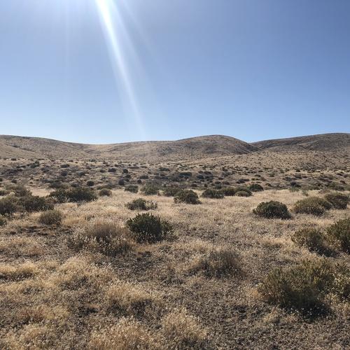 Vacant land, Nevada