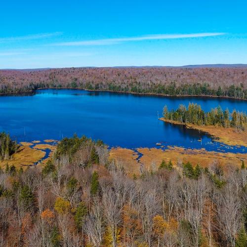Sand Pond, Western Adirondacks, Croghan, NY
