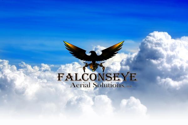 FalconsEye Aerial Solutions, LLC