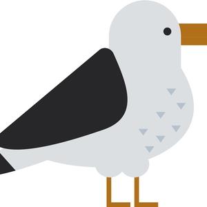 Bird's Eye Drone Productions