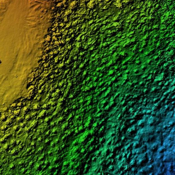 Elevation and 3D Models