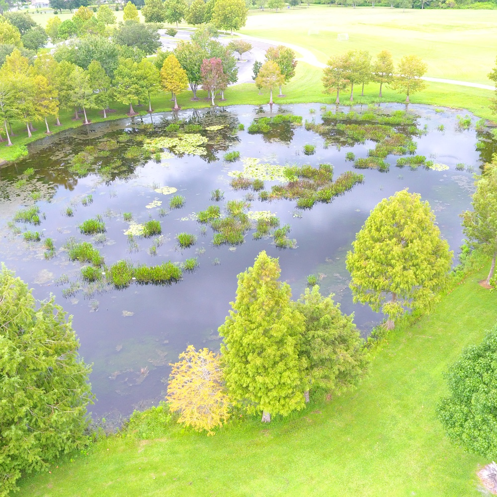 Refreshing Pond view