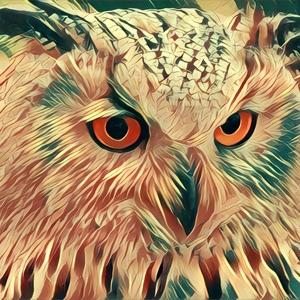 Birds Eye Alternative, LLC