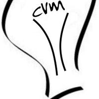 Cedar Valley Media Inc.