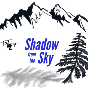 Shadow From The Sky