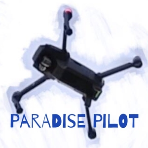 Paradise Pilot