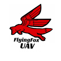 FlyingFox UAV