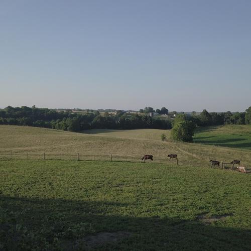 Pasture Survey