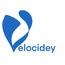 Velocidey Consulting, LLC
