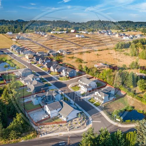 Real Estate: Residential Development
