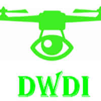 DW Digital Imagery & Associates, LLC