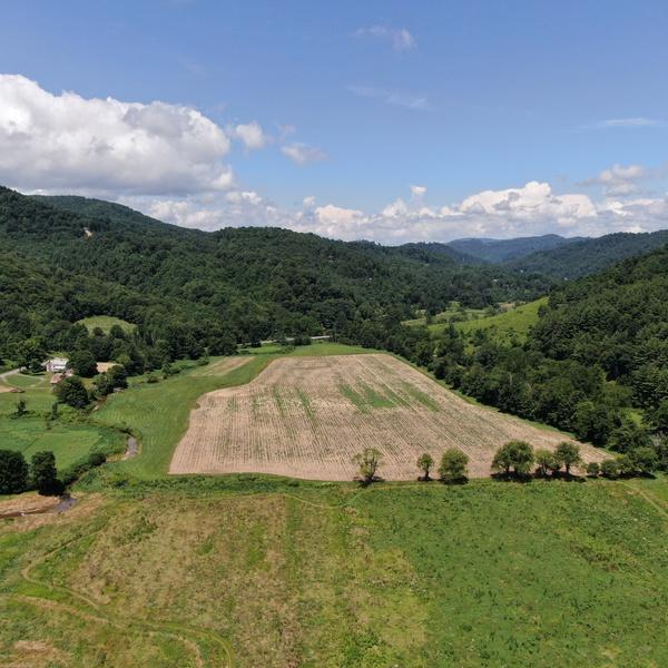 Farmland in Newland, NC
