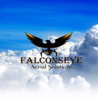 FalconsEye Aerial Solutions, LLC