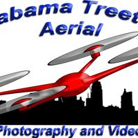 Alabama Treetop Aerial