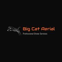 Big Cat Aerial