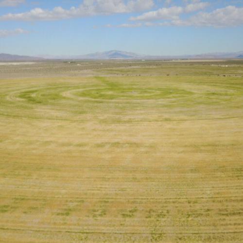 Farm Land 2