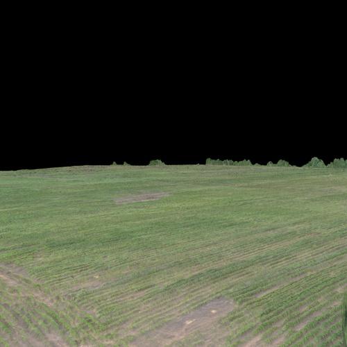 40 Acre Cotton Field 3D