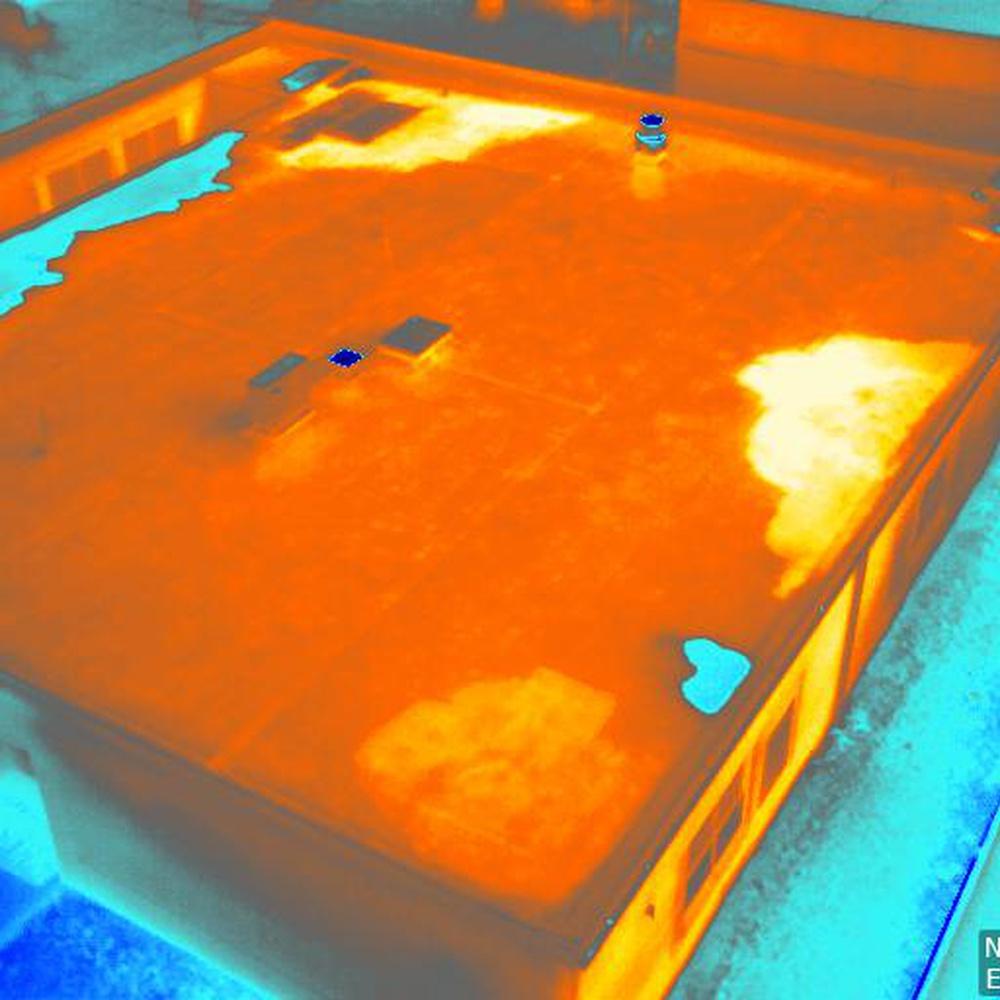 Underlying Roof Moisture