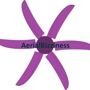 aerialbizziness llc