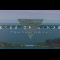 Eyes of Wings