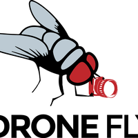 Drone Fly