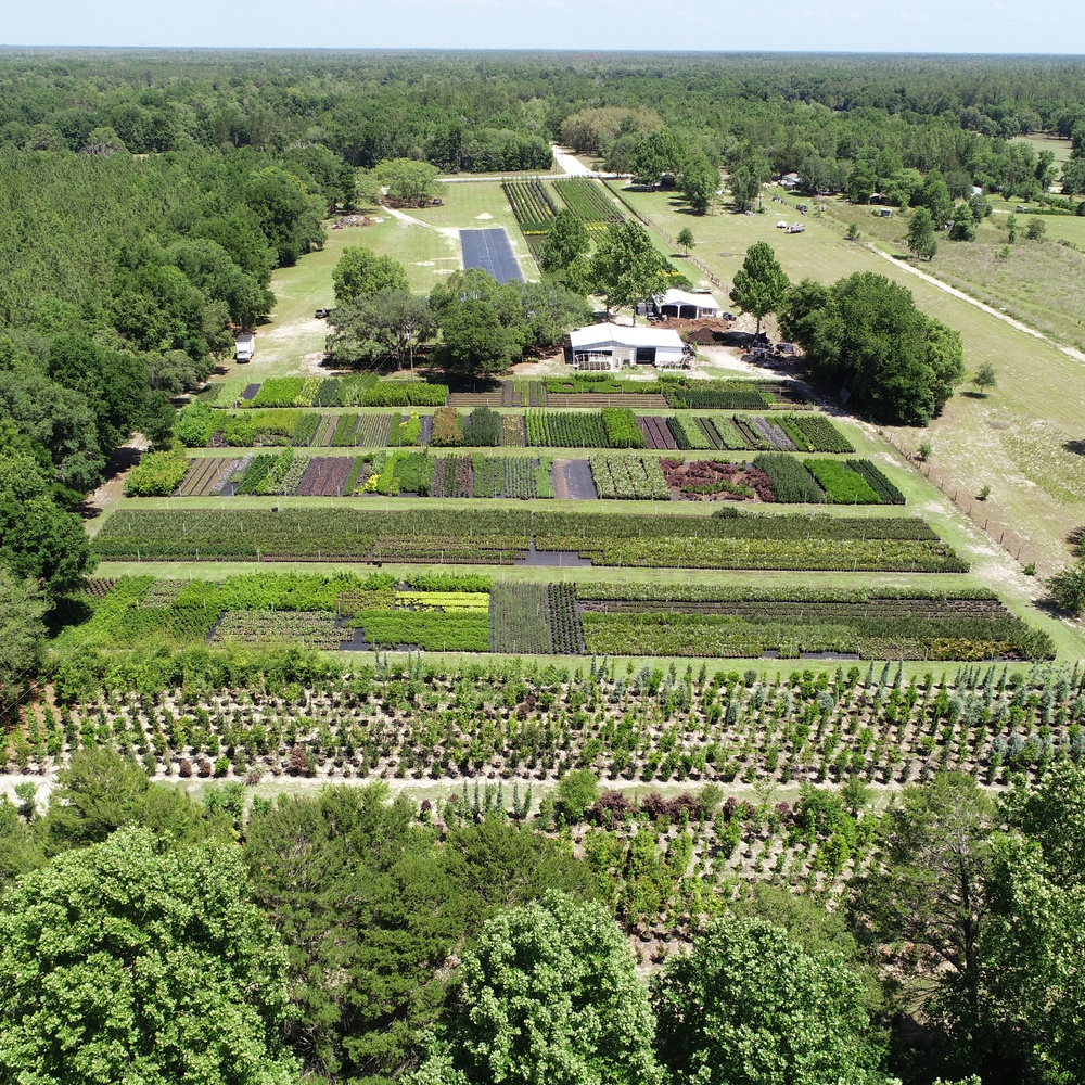 Landscape Nursery in Levy County