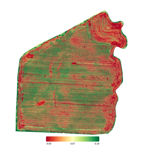 40 Acre Cotton Field Plant Health (RGB)