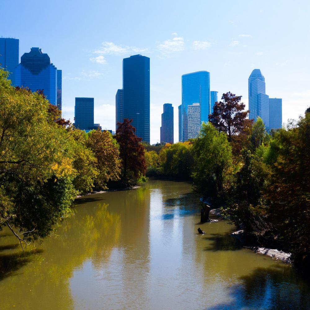 Buffalo Bayou  in Houston