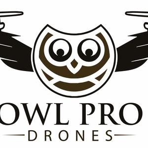 Owl Pro Drones