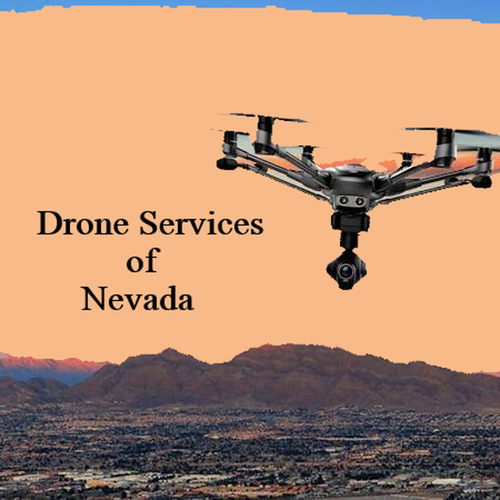Drone Services of Nevada