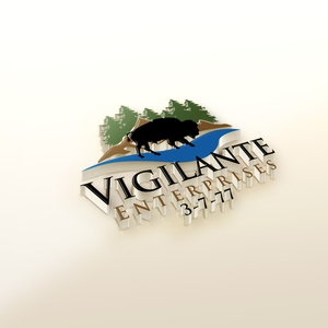 Vigilante Enterprises LLC