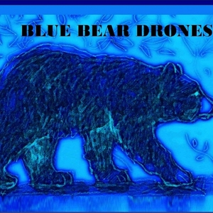 BlueBearDrones