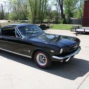 Mustang Guy