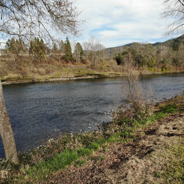 Rogue River in Grants Pass OR