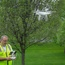 Seese Drone Services