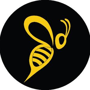 Bumblebee Aerial