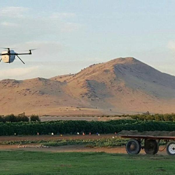 Drone on a farm