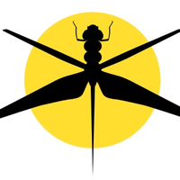 Dragonfly Aerial Services