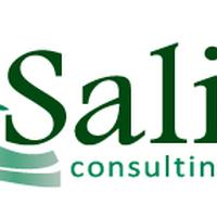 Salix Consulting, Inc.